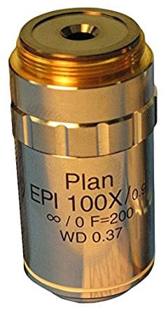 MA874 Epi Plan Objective 100x