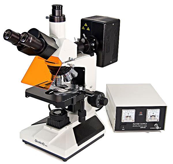 Omano OMFL400 Fluorescence Compound Microscope