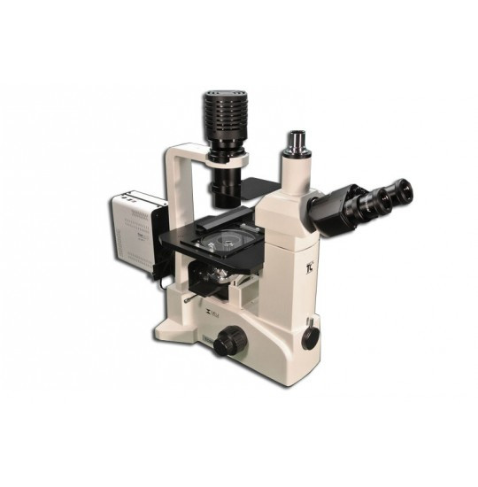 TC-5500/5600 Inverted LED/Halogen Epi- Fluorescence Biological Microscope