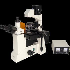 OMFL600 Inverted Fluorescence Compound Microscope