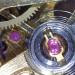 Dino-Lite Premier AD4012NTL digital microscope watch