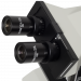 Meiji ML5870/5970 Phase Contrast Microscope eyepipeces