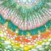 Gryphax Prokyon 20.7 MP CMOS Color Digital Microscope Camera 3