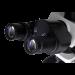 Omano OM349P Research-Grade Polarizing Microscope eyepieces