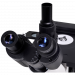 Eyepiece view - OMM300-T Inverted Trinocular Compound Microscope eyeypiece view