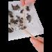 Omano Owl Pellet Contents