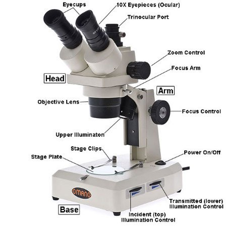 Stereo Microscope Parts